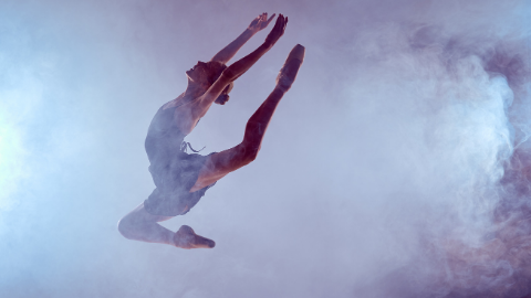 The Performer's Pelvis: Introduction to Pelvic Floor Concerns in Dancers and Artistic Athletes