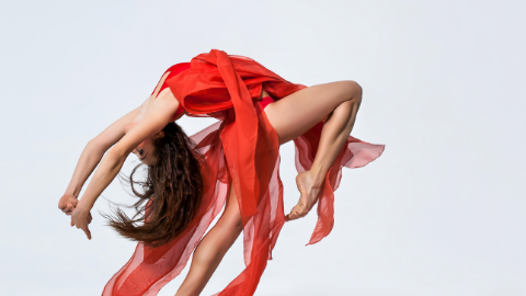 The Performer's Pelvis: Managing Pelvic Floor Dysfunction in Dancers and Artistic Athletes