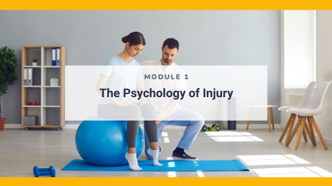 Injury Management from a Psychological Perspective for Practitioners: Module 1 - The Psychology of Injury