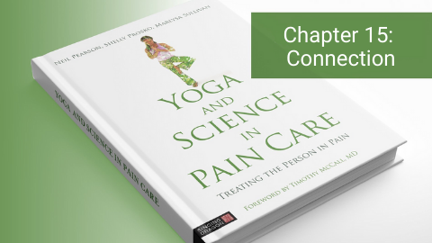 Yoga and Science in Pain Care Chapter 15: Connection, Meaningful Relationship and Purpose in Life - Social and Existential Concerns in Pain Care