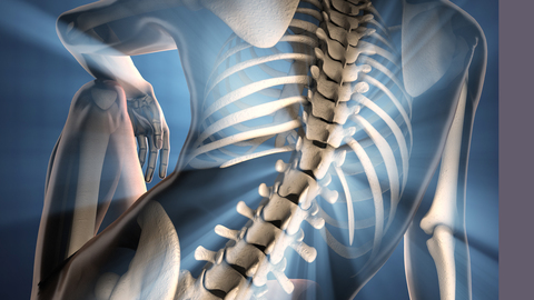 Differential Diagnosis of the Spine: Physical Diagnosis of the Spine