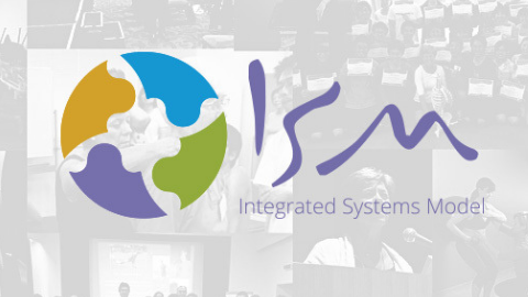 An Introduction To The Integrated Systems Model (ISM) For The Complex Patient