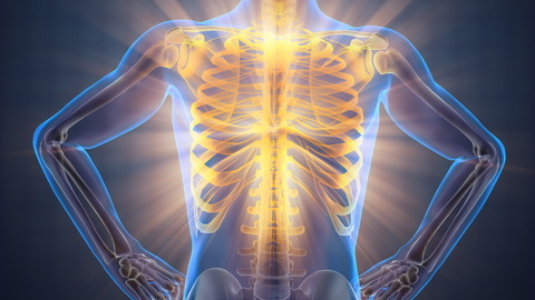 Just Breathe 101:  Respiration and the Impact on Health, Pain, Posture and Movement