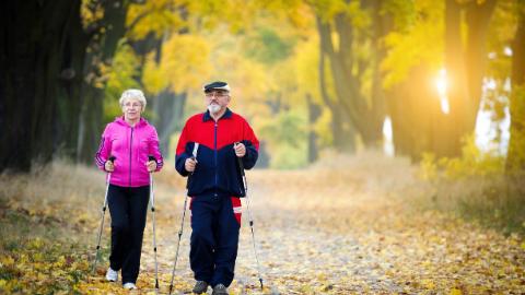 APTEI: Hip Osteoarthritis (OA)