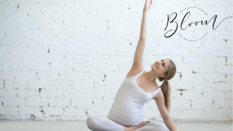Prenatal PhysioAlignment - Spring 2021
