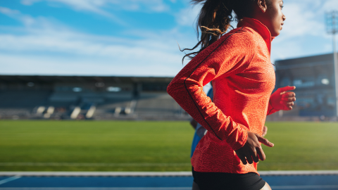 The Female Athlete - Online Edition v5.23