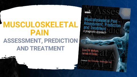 Musculoskeletal Pain – Assessment, Prediction and Treatment
