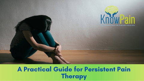 A Practical Guide for Persistent Pain Therapy