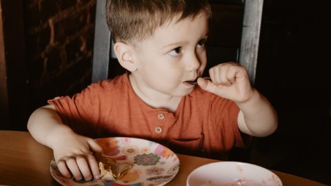 Nutritional Implications and Interventions for Children with Autism Spectrum Disorder (ASD)